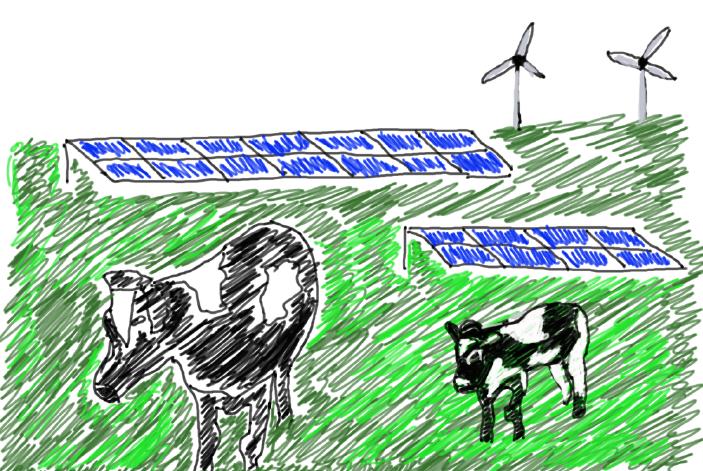 energielandschap koeien